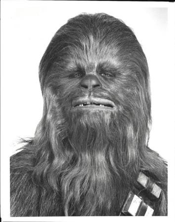 HS-PressPhoto-Chewbacca-Front-InfoFoldedBack