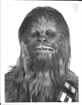HS-PressPhoto-Chewbacca-Front-InfoFoldedBack